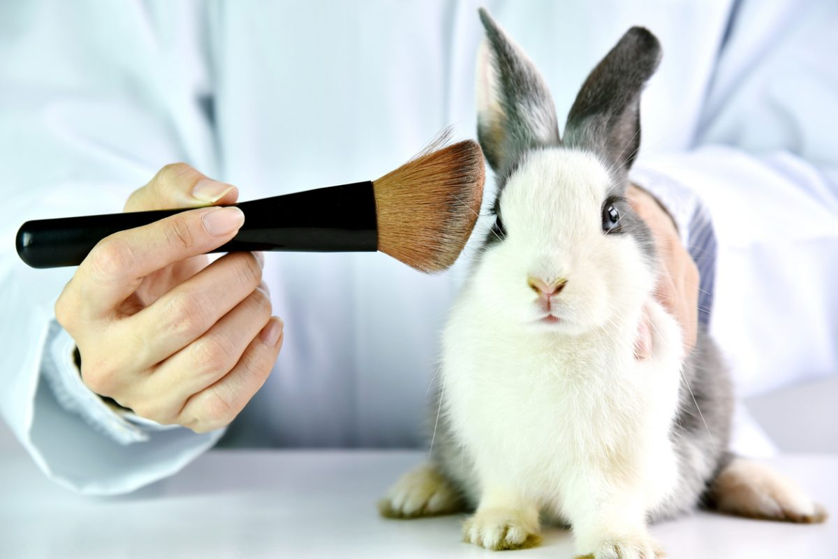Image for Animal testing does more good than harm